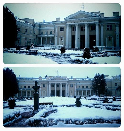 2 снегири.jpg